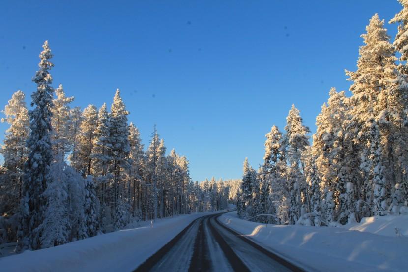 Finlandia | Días 1 y 2 – Helsinki: Comiendo Helandos a-10ºC